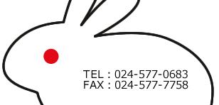 TEL : 024-577-0683 FAX : 024-577-7758